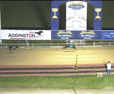 Perfect Result wins heat 2 of the Stayers Cup
